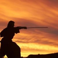 O código do Samurai e o líder moderno